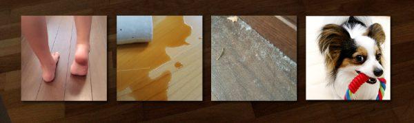 家庭の床汚れ_皮脂_食べこぼし_ほこり_ペットの汚れ
